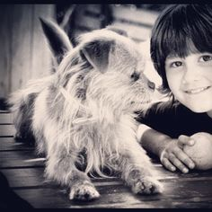 Do you want to adopt him? #sosanimals