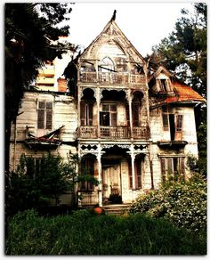 My dream is to one day restore a house like this, a house that others have given up on.