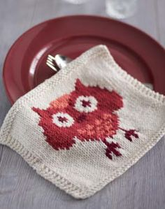 Knitted Owl Dishcloth in Lily Sugar 'n Cream