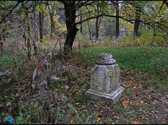 Bachelor's Grove Cemetery, Chicago Suburbs, Illinois   The 14 Absolute Creepiest Places To Visit In The United States
