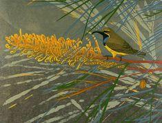 Andrea Rich. Sunbird. 2009. Woodblock print.