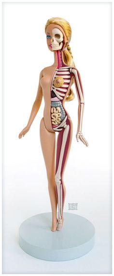 Barbie Anatomy Model by Jason Freeny