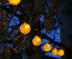 String lights for garden