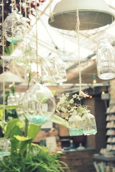 greenhouse within a greenhouse