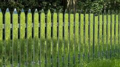 An invisible mirrored fence is way better than a white picket fence