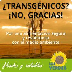 Los Verdes lamentan que el PSOE haya unido sus votos al PP a favor de los transgénicos en Andalucía
