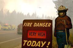 Smokey Bear: Information from Answers.