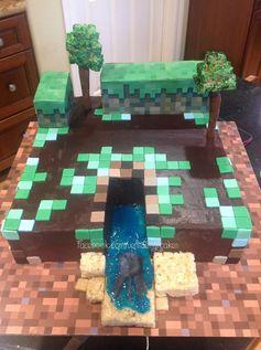 Minecraft birthday cake.