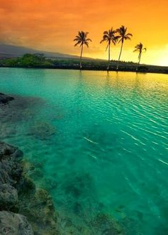 Amazing Hawaii