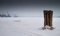 Winterland | Flickr - Photo Sharing!