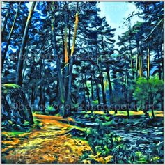 BOSQUE VIRGINAL// Hoy me he acercado al templo de los bosques adentrándome entre los altos pinos; sobre columnas de fustes de madera formábase una cúpula de verdes. Los muros eran rocas tapizadas de líquenes, la alfombra era un camino bordeando la corriente de destellos con son armónico de música en las aguas. La tenue luz filtraba entre los árboles cual en la catedral por los vitrales; espadas de claror cambiante herían determin… (Ver➦) http://albertotroconiz.blogspot.com.es/2013/08/virgen.html