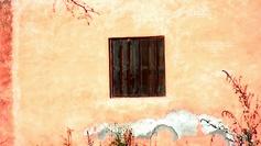 Un vieux mur, telle une oeuvre d'art...