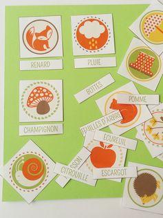 Voilà un joli petit imagier de l'automne à imprimer : 12 cartes pour appréhender les premiers mots de vocabulaire de l'automne.