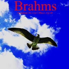 http://www.barnesandnoble.com/w/digitalmusic-brahms-symphony-no-1-ashby-navis-tennyson-media-publisher-llc/1114987013?ean=2940147119686