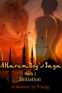 To purchase A Harem Boy's Saga series: http://www.amazon.com/s/ref=nb_sb_ss_i_0_7?url=search-alias%3Dstripbooks&field-keywords=a%20harem%20boy%27s%20saga&sprefix=A+Harem%2Cstripbooks%2C404