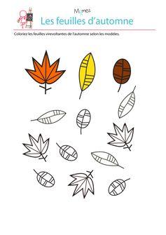 Jouons avec les couleurs de l'automne grâce à ce petit exercice de coloriage et de repère de formes dans l'espace ! Il s'agit pour l'enfant de colorier les feuilles de la bonne couleur en se référant au modèle.