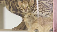 VALENTINO PANTHER COLLECTION | THE WILDE SIDE