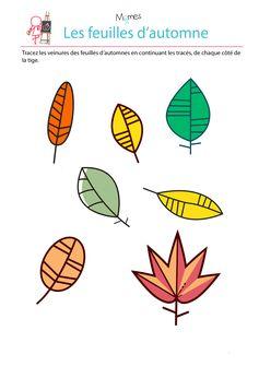 Voilà un exercice qui paraît simple au premier abord : tracer les veinures des feuilles selon l'axe de symétrie de la tige. Sauf que les feuilles d'automne tombent et virevoltent au vent et donc que l'axe de symétrie n'est jamais le même !