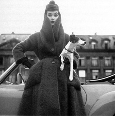 Dovima wearing Dior in Paris, accompanired by a Smooth Haired Fox Terrier, 1956 by Avedon