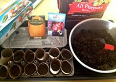 Tot seed activities! This looks like so much fun - I can't wait to do this!  #totschool #toddleractivities
