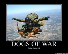 Special forces pup skydiving