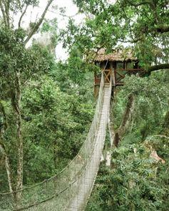 Inkaterra Reserva, Amazonica, Peru