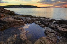 acadia national park tidal pools