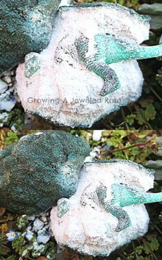Dinosaur Activities for Kids- Eggs ~ Growing A Jeweled Rose #toddleractivities #dinosaur activities
