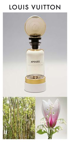 Apogée Les Parfum Louis Vuitton. The lily-of-the-valley ascends to blissful heights. Click to Discover the Scent
