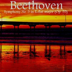 http://www.barnesandnoble.com/w/digitalmusic-beethovens-symphony-no-3-in-e-flat-major-ashby-navis-tennyson-media-publisher-llc/1115953644?ean=2940147137710