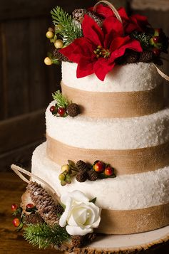 Winter wedding cake | Christmas Chic | Fancy This Photography | Ultimate Wedding Magazine #cake #winter #wedding