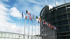 Drapeaux au vent devant le Parlement européen à Strasbourg.