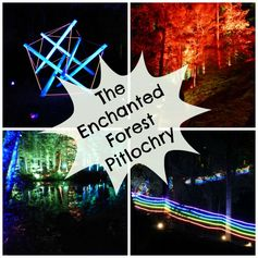 Enchanted+Forest,+Pitlochry
