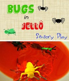 Bugs in Jello Sensory Play