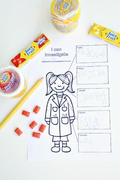 Juicy Fruit Gum Five Senses Science Investigation with FREE printable