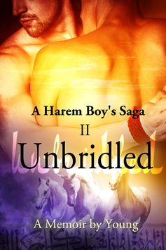 A Harem Boy's Saga - book II - Unbridled; a memoir by Young. http://www.amazon.com/s/ref=nb_sb_ss_i_0_7?url=search-alias%3Dstripbooks&field-keywords=a%20harem%20boy%27s%20saga&sprefix=a+harem%2Cstripbooks%2C155