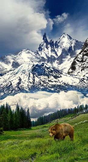 20 Awe-inspiring Mountain Views That Will Take Your Breath Away - Rocky Mountains, #Canada Think this is a bit photoshopped but since I live next to the mountains here in Alberta I can state that individually everything is right