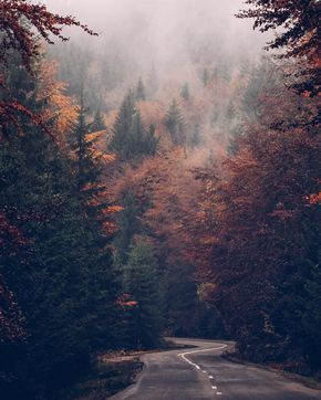 All the Autumn feels in Romania  #takingamomentintimeretreats