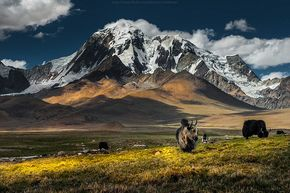 Tibet - Re-visit this shot by CoolbieRe, via Flickr