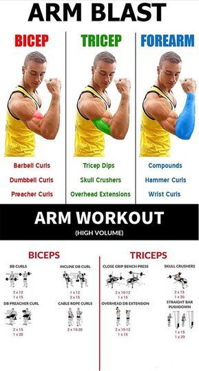HOW TO REVERSE FOREARM CURL