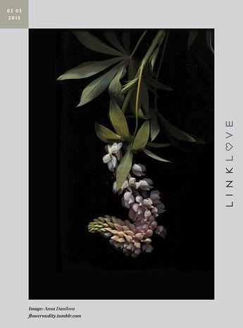 nNubby Twiglet | Link Love: Anna Danilova