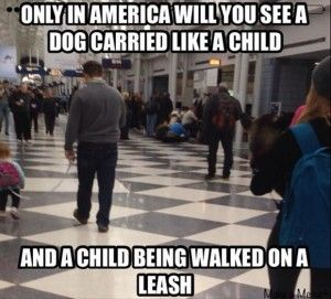 kids on leashes funny