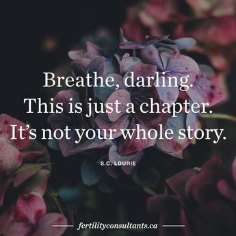 Breathe, darling. This is just a chapter. It's not your whole story. SC Lourie surrogacy. surrogate. surrogacy in Canada. infertility. egg donor. motherhood. Darling. Thatsdarling. kinfolk. quote. quote of the day.