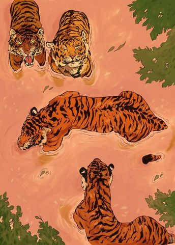 Tiger Beach by Vincent Cecil