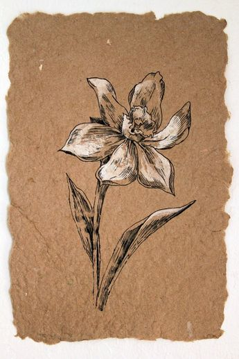 Flower Drawing. White Narcissus. Classis Style Original Artwork. Botanical Art. Black Ink Drawing on