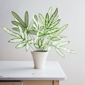 Life-Sized Paper Plants are Beaming Beauties That Look Like the Real Thing
