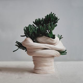 Admiring the free-form, ceramic, coil pots by Rose Wei @zhu.ohmu. #GDplants