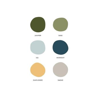 Color theory, color combinations, color inspiration, color palette, brand colors, branding,neutrals, green, sage, light blue, blue, teal, yellow