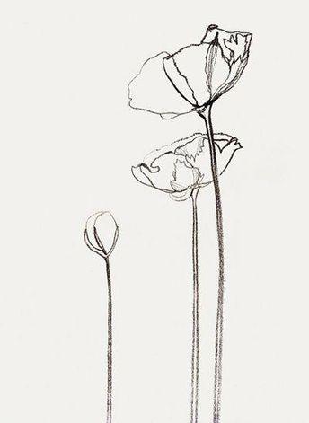 """Bernadette Pascua - Google Search #""""flowersdrawing"""""""