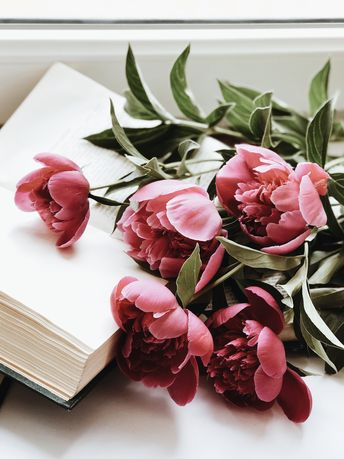 Peonies  #peonies #flowers #pink #books #flatlay #spring #пионы